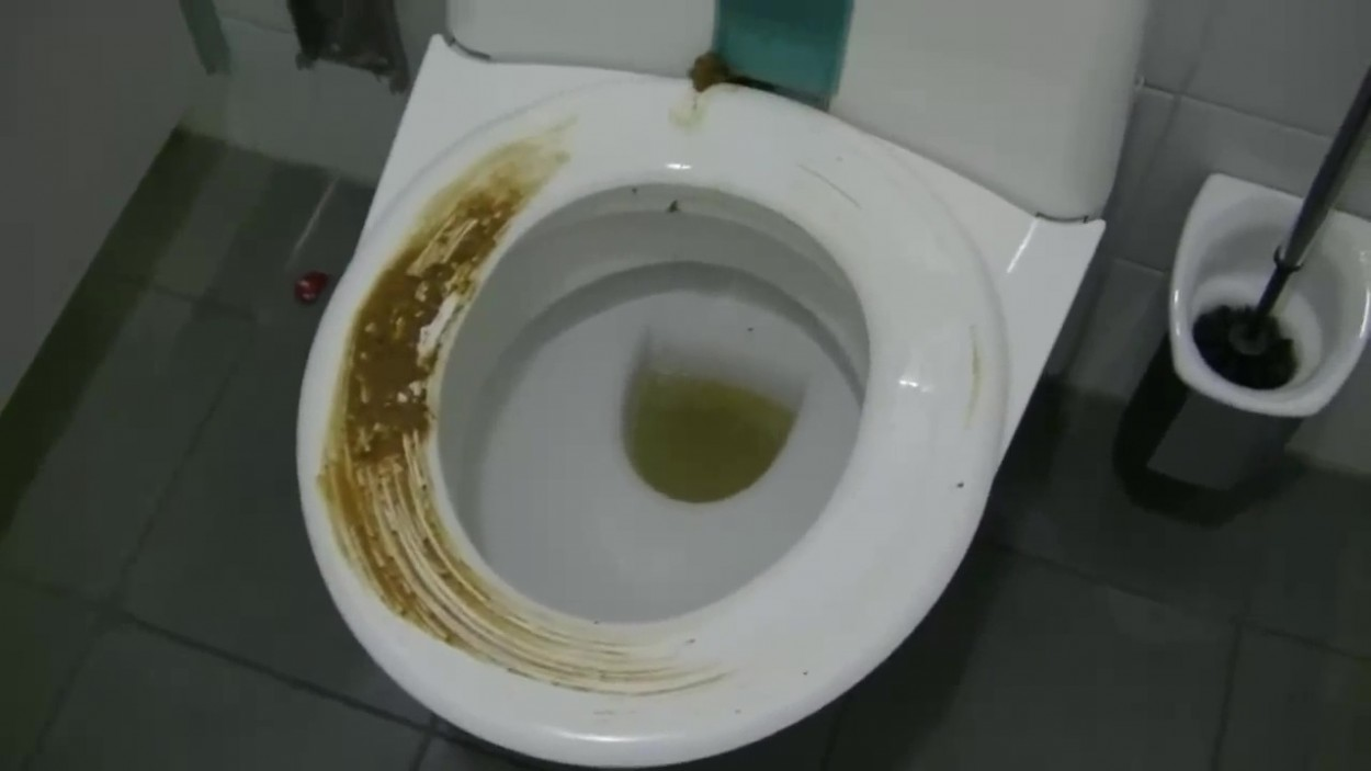 Girl Sabotages Public Self Cleaning Toilet Into Smearing
